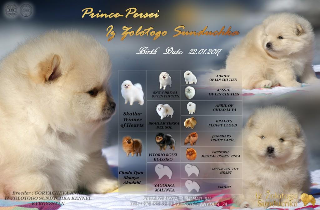 принц персей